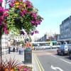 Blooming Aberdeen
