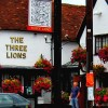 The Three Lions pub sign, 55 Meadrow