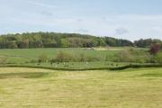 Threave Estate farmland
