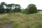 Rough Farmland near Sigglesthorne