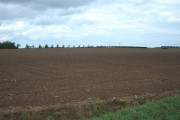 Farmland near Great Hatfield