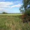 View towards Mill Dike