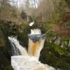 Pecca Falls, River Twiss, near Ingleton