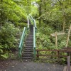 Stairway on footpath from Colinton Dell
