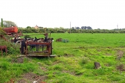Duncormick  Farmland