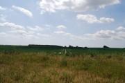 Farmland, Reculver Country Park