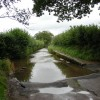 Ford near Wookey, Somerset
