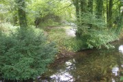 River Piddle Behind Affpuddle Church