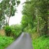 Tareesh Lane, Murvaclogher & Broclough Townland