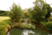 The River Evenlode near Combe
