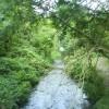 River Ver