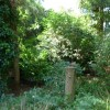 Paignton : Paignton Zoo, Wetlands Zone
