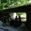 Paignton : Paignton Zoo, Looking into the Enclosure