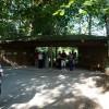 Paignton : Paignton Zoo, Enclosure Viewing Area