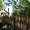 Paignton : Paignton Zoo, Walkway