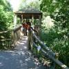 Paignton : Paignton Zoo, Lemur Woods and Path