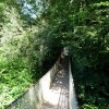 Paignton : Paignton Zoo, Wobbly Bridge in Lemur Woods