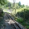 Paignton : Paignton Zoo, Railway