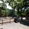 Paignton : Paignton Zoo, Shop & Play Area