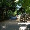 Paignton : Paignton Zoo, Uphill Pathway