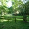 Paignton : Paignton Zoo, Ostrich Enclosure