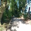 Paignton : Paignton Zoo, Path