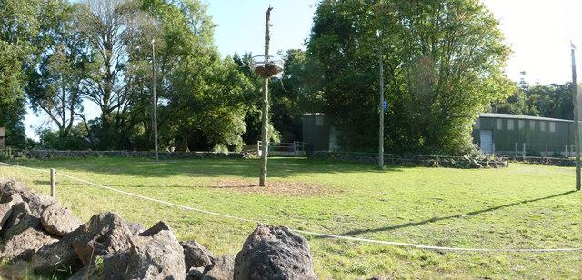 Paignton : Paignton Zoo, Giraffes Enclosure