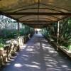 Paignton : Paignton Zoo, Pathway