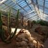 Paignton : Paignton Zoo, The Desert House
