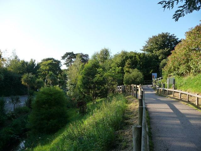 Paignton : Hillside Footpath