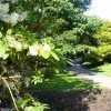 Singleton Park, Swansea