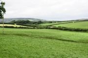 Farmland West of Llanddewi