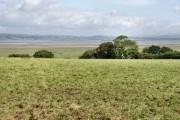 Fields near Weobley Castle