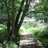 To Heckingham on the Wherryman's Way