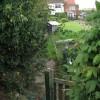 Cottages at Heckingham Holes