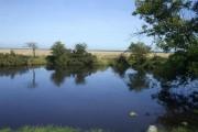 Pond at West Border Farm