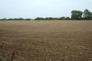 Farmland, Leconfield Grange