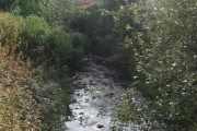 River Trent - Downstream of the A50