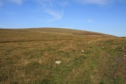 Throwleigh Common