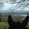 View  Towards Witcombe reservoir and the Severn Vale