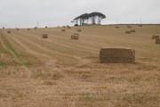 Harvested field, Dickmountlaw
