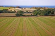 Farmland near Weybourne, Norfolk