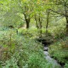 The Greathough Brook