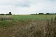 Farmland near Bridewell Farm Cottages, East End, Witney