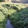 River Flit