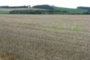 Stubble fields at Woodhead