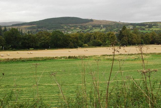 Strathpeffer Farmland