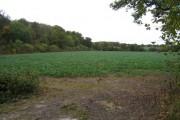 Arable land - s/w of Poors Farm