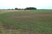 Farmland North West of Benningholme Grange