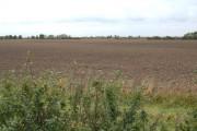 Farmland, Wawne Common